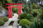 Monte - Japanese door in the tropical garden